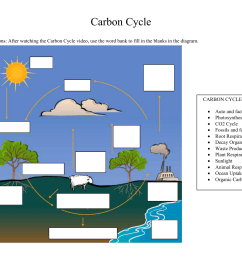carbon cycle diagram fill in [ 1651 x 1275 Pixel ]