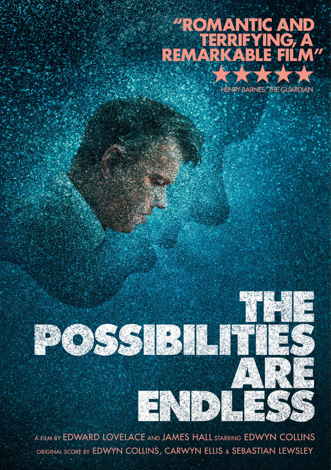 The Possibilities Are Endless DVD - Zavvi UK