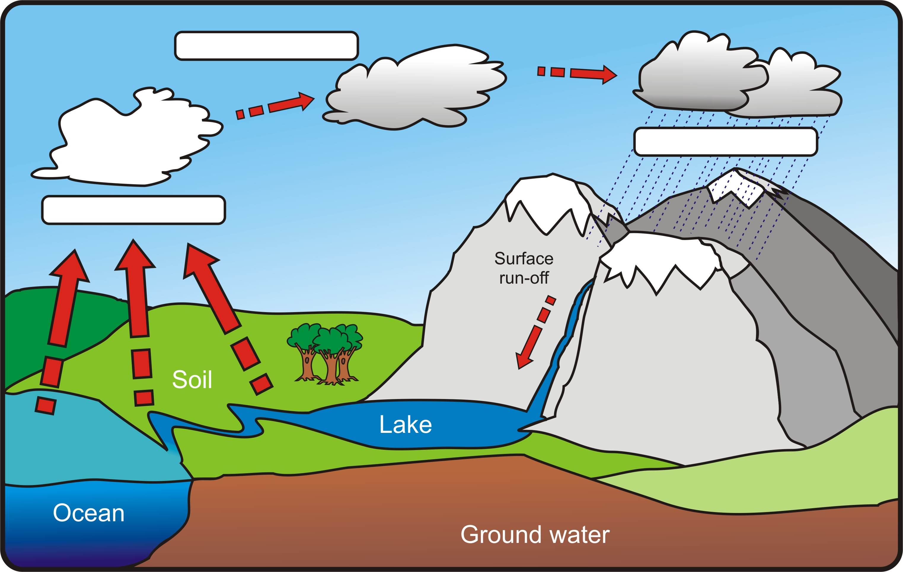 water cycle diagram blank 65 mustang wiring hydrologic without labels great installation of label rh 5 yoga neuwied de simple