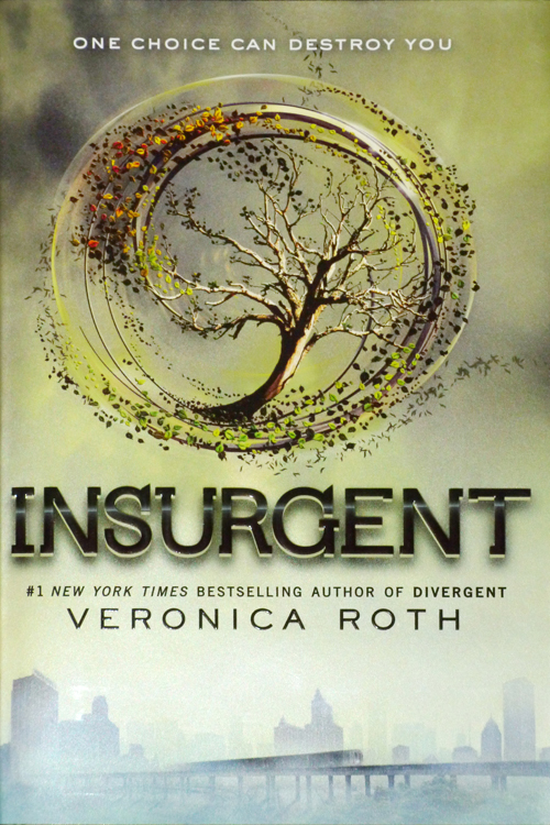 Image result for insurgent