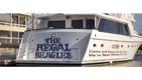 More Info AboutYacht Rock Party w/ The Regal Beagles, DJ Billy Barnacle & Capt. Scott