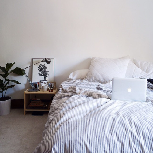 apartment, apple, bed, bedroom, blanket
