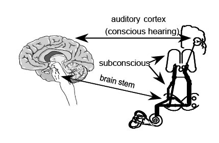 Options For Tinnitus Treatments (For DJs Who Already Have