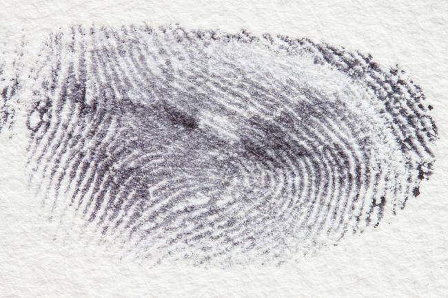 Large fingerprint in black ink on white paper (Eighth Grade Science)
