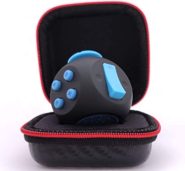 Black and blue fidget cube in a zippered case