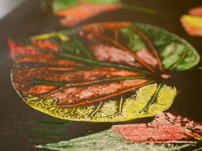Leaf printed with white paint and tinted with colored pencils on black paper (First Grade Art Projects)