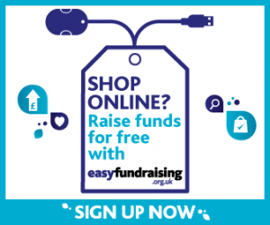 easy fundraising banner_336x280