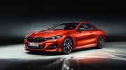 2019_BMW_8_Series_38