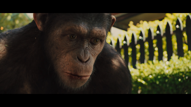 rise_of_the_planet_of_the_apes_34