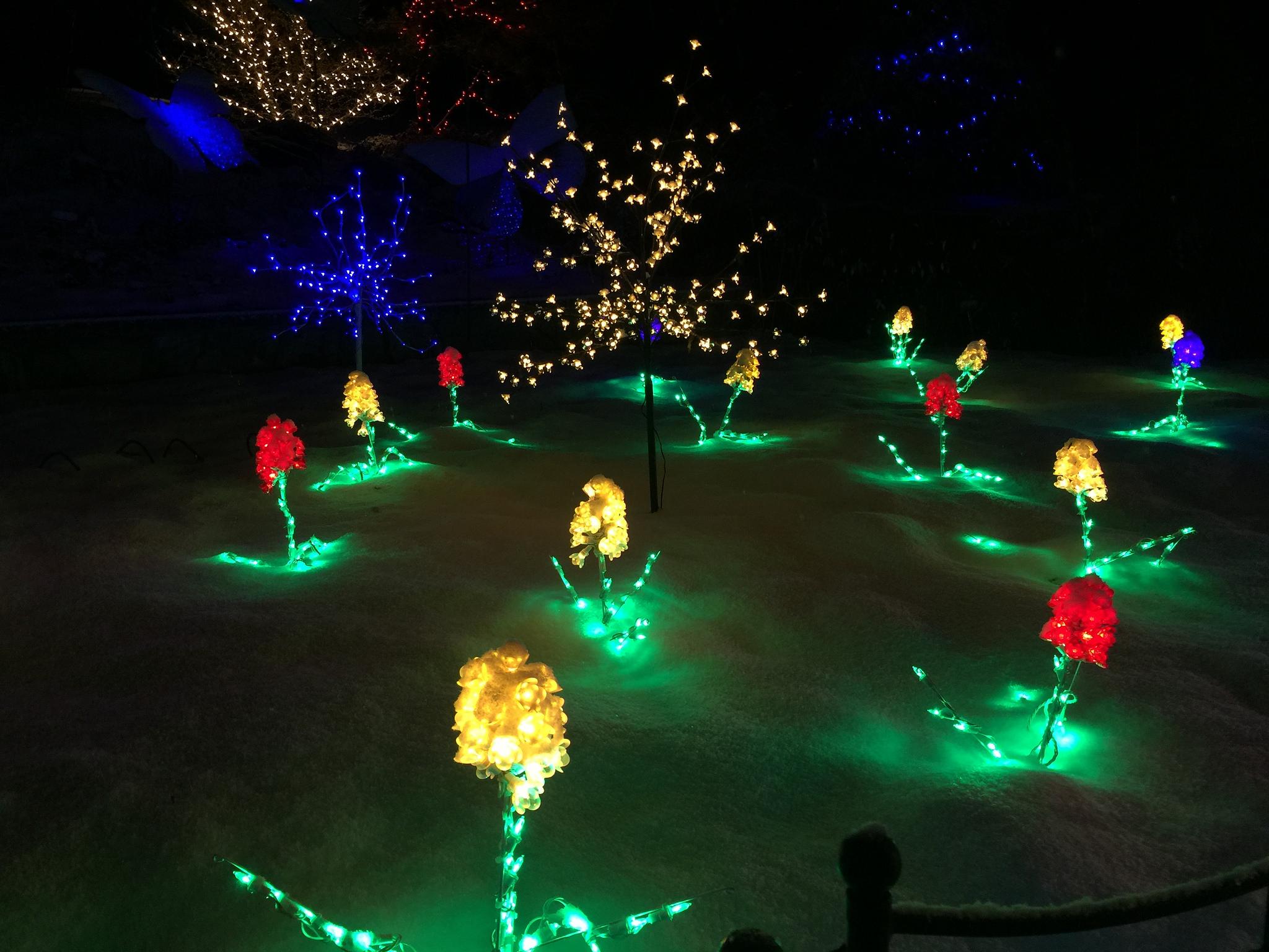 brookside gardens light display