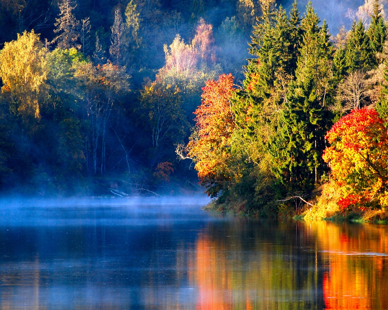 Wallpaper Latvian autumn forest river mist in the morning 1920x1200 HD Picture Image