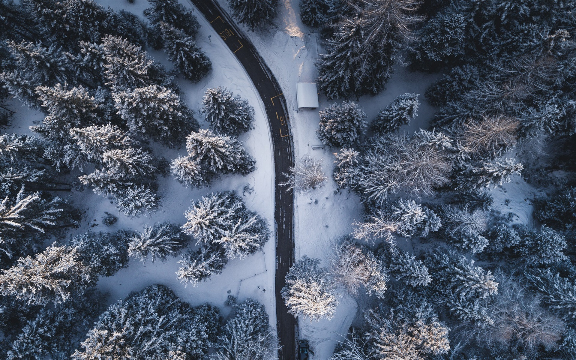 Cute Love Wallpaper Iphone 4s Wallpaper Winter Trees Road Snow From Top View