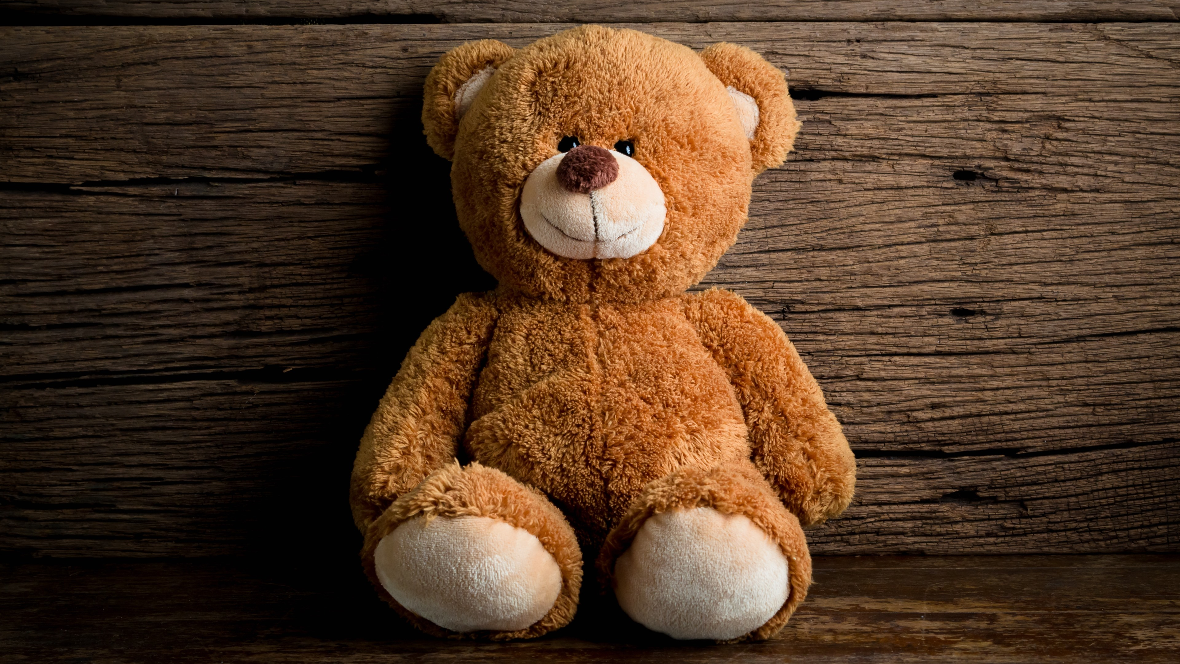 Cute Japanese Wallpaper Iphone Wallpaper Cute Teddy Bear Toy 5120x2880 Uhd 5k Picture Image