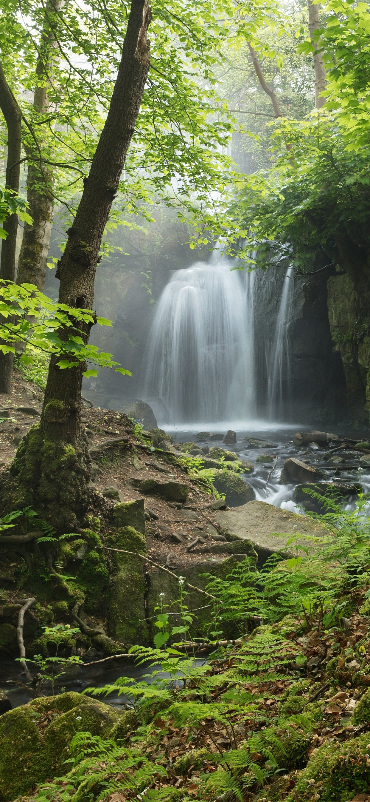 Hd Wallpapers Butterflies Widescreen Wallpaper England Derbyshire Peak District Waterfall