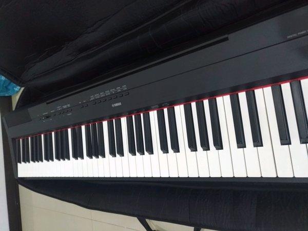 Digital Piano Yamaha P115