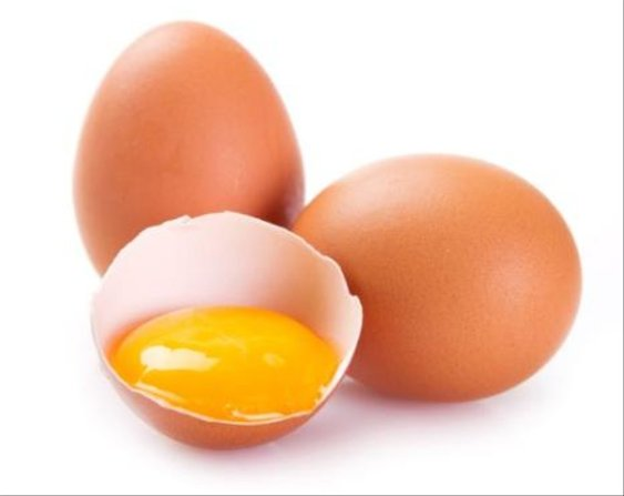 Image result for telur ayam