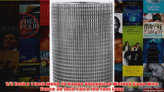 14 Gauge Cage Mesh Long Inch Welded Wire 1 Inch Tall Inch 36 X 1 Feet X 100