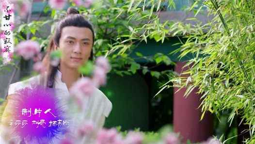 調皮王妃17&影片 Dailymotion