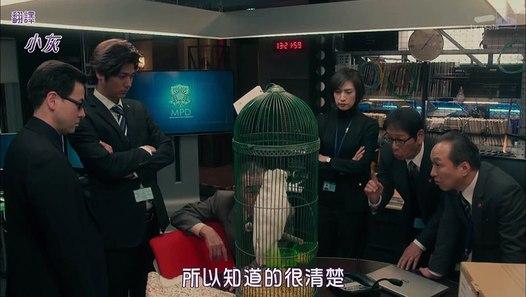 緊急審訊室2 第3集 Kinkyu Torishirabeshitsu 2 Ep 3─影片 Dailymotion