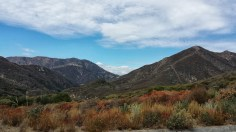 Angeles National Forest Landscape