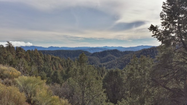 Los Padres National Forest from Mt. Pinos
