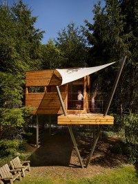 Contemporary Wooden Tree Houses To Live In Idea