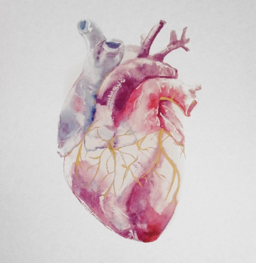 Color Human Heart Painting