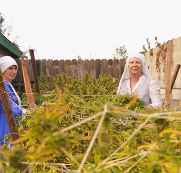 As freiras Kate e Darcy na plantação de maconha que cultivam no quintal de casa (Foto: Reprodução Instagram)