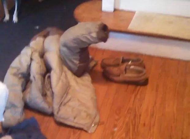 Ao se refugiar em roupa, cachorro criou 'casaco que late' em vídeo (Foto: Reprodução/YouTube/Matt Rundquist )