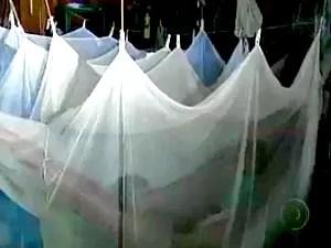 Mosquiteiros impregnados com inseticida biológico ajudam na redução dos casos malária (Foto: Reprodução/TVAM)