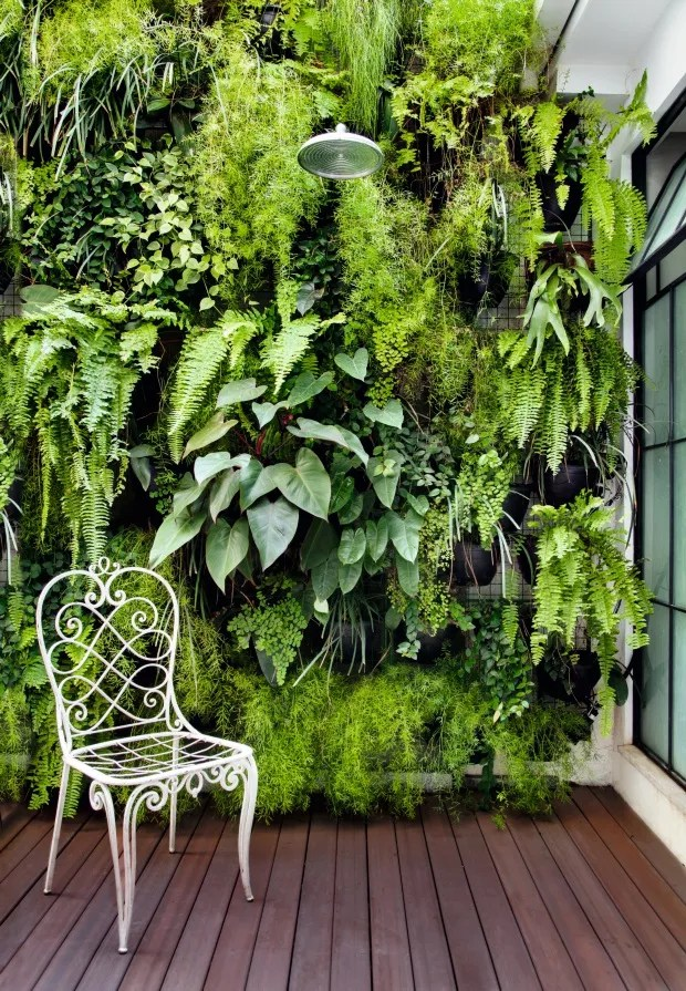 Jardim vertical. Projeto do paisagista Paulo Aranha, da SkyGarden Envec (Foto: Denilson Machado / MCA Estúdio / Divulgação)