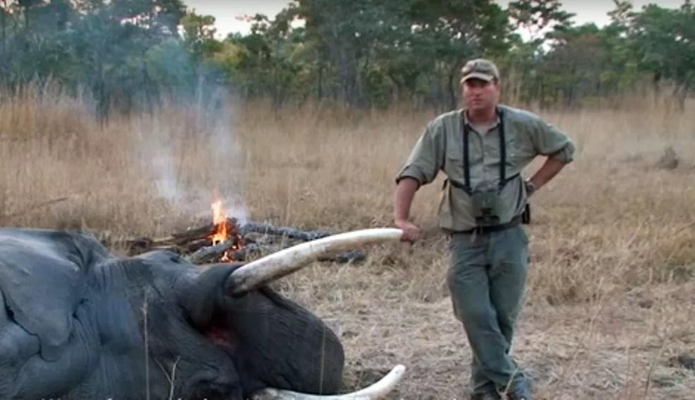 Theunis Botha, em vídeo de divulgação de seu trabalho (Foto: Theunis Botha/Youtube/Reprodução)
