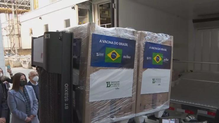 Butantan entrega novo lote com 1 milhão de doses ao Ministério da Saúde nesta segunda (19) — Foto: Divulgação