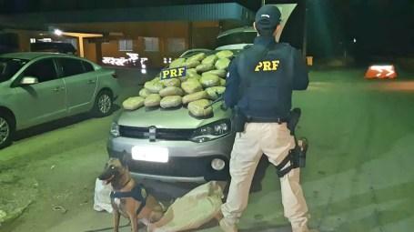 Cão farejador ajudou a PRF a encontrar 30,7 kg de maconha dentro de um carro, em Serra Talhada — Foto: PRF/Divulgação