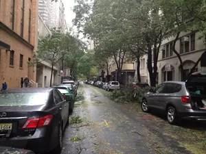 Várias árvores de Nova York ficaram quebradas após a chegada da tempestade Sandy (Foto: Patrícia Dinely/ Acervo Pessoal)
