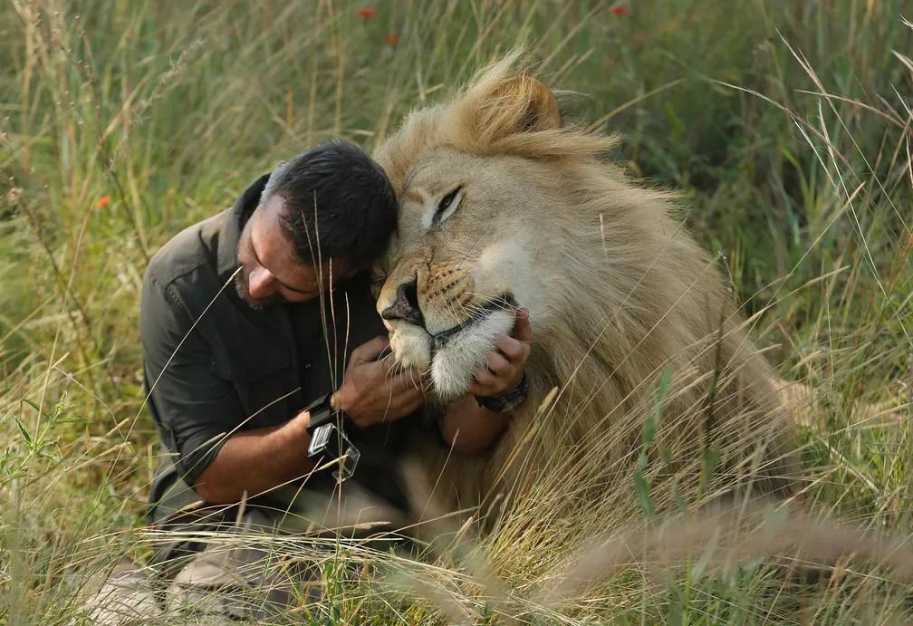 29 de maio - Kavin Richardson, conhecido popularmente como 'encantador de leões', faz carinho em um leão enquanto caminha pela reserva Dinokeng perto de Pretória, na África do Sul. Richardson busca aumentar a conscientização sobre a situação dos leões em ambiente selvagem na áfrica, onde a quantidade diminuiu drasticamente nas últimas décadas. Foto tirada em 15 de março e divulgada nesta segunda (29) (Foto: Denis Farrell/AP)