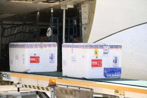 Vacinas chegaram ao Rio Grande do Norte — Foto: Divulgação