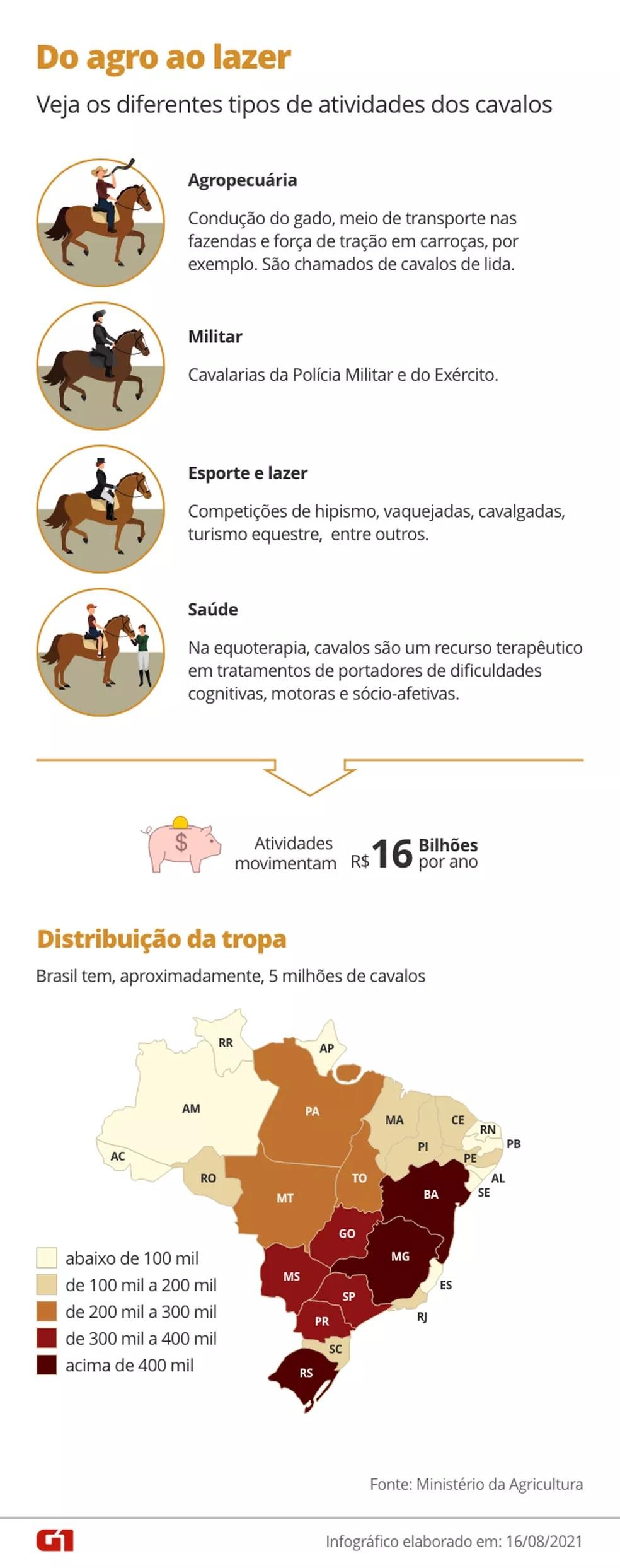 Atividades compostas por cavalos movimentam cerca de R$ 16 bilhões — Foto: Arte/G1