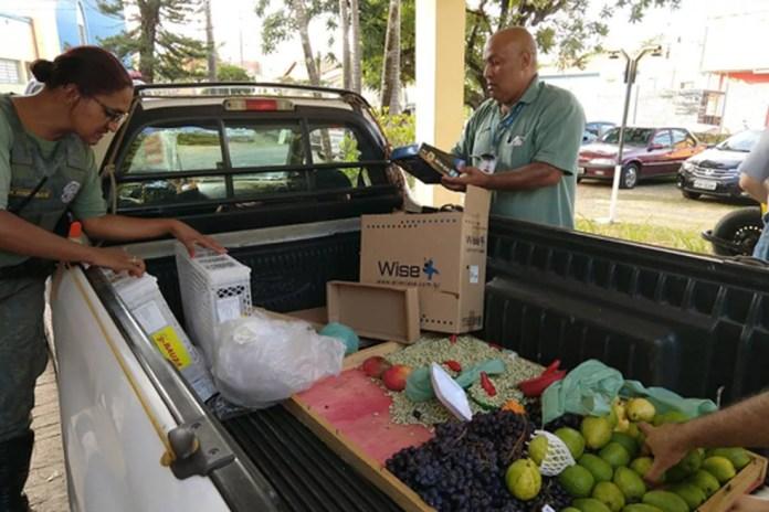 Fiscalização foi realizada após denúncias, segundo a Prefeitura (Foto: Prefeitura de Limeira)