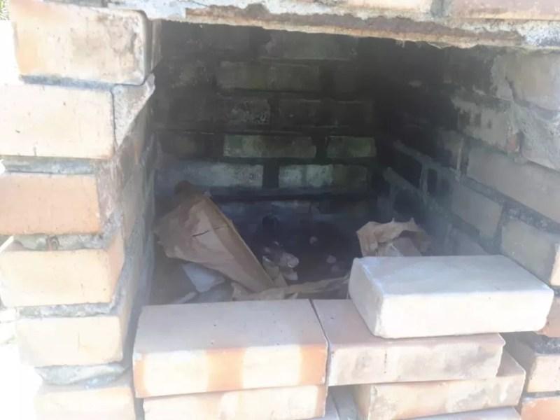 Família de gambás é encontrada dentro de churrasqueira — Foto: Divulgação/Ascom