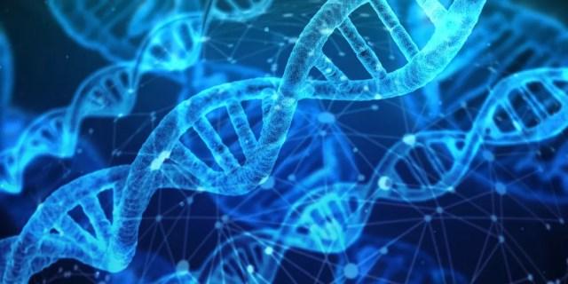 Edição do DNA foi possível por meio da técnica CRISPR — Foto: Reprodução/Pixabay