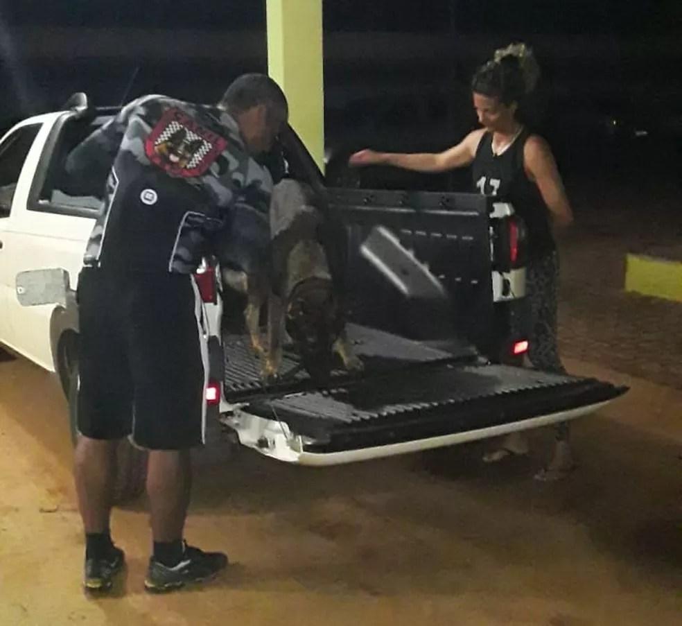 Cão farejador ajudou a localizar a droga — Foto: Divulgação/Polícia Militar