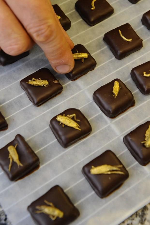 Musquar coloca grilos, gafanhotos e outros insetos em seus chocolates (Foto: Jean-Christophe Verhaegen/AFP)