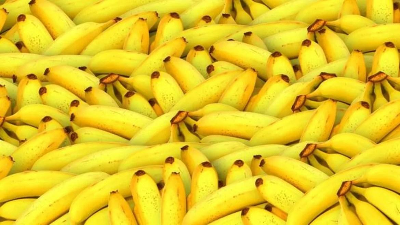A pandemia que ameaça destruir a fruta mais popular do mundo