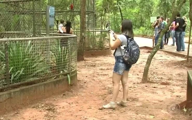 Zoológico recebe mais de 40 mil pessoas por ano (Foto: Reprodução/TV TEM)
