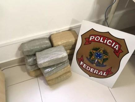 Droga foi levada para a Delegacia da Polícia Federal em Caruaru (Foto: Polícia Federal/Divulgação)