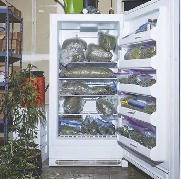 O clique da geladeira da casa onde as freiras vivem foi feito pela dupla de fotógrafos Shaughn Crawford e John DuBois, que registrou o dia a dia das californianas (Foto: Reprodução Instagram)