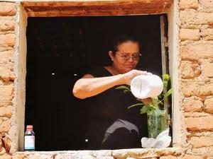 Maria Gercília consegue ter água para irrigar a plantação após o sistema de bioágua (Foto: Juliane Peixinho/ G1)