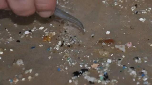 Partículas se acumulam nos oceanos. — Foto: SEA EDUCATION ASSOCIATION