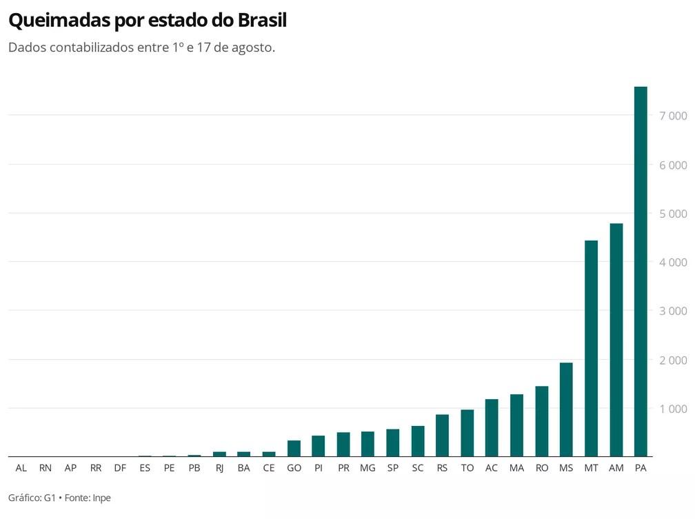 Queimadas por estado do Brasil em agosto — Foto: Carolina Dantas/G1